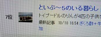 DSCF07041.jpg